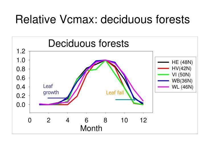 Relative Vcmax: deciduous forests