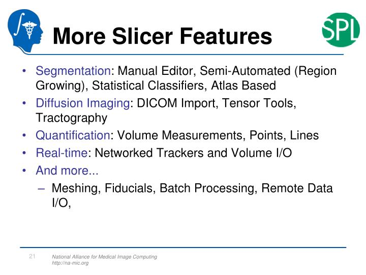 More Slicer Features