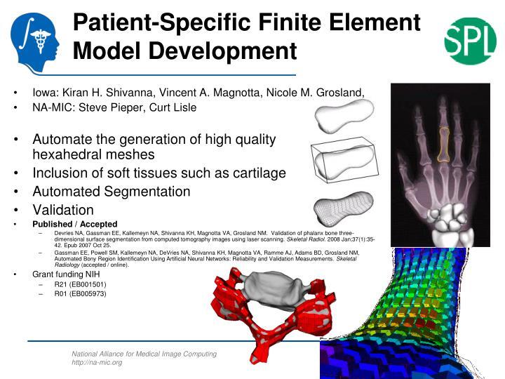 Patient-Specific Finite Element Model Development