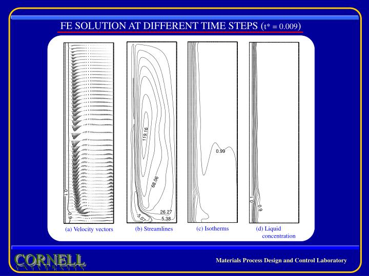 FE SOLUTION AT DIFFERENT TIME STEPS (