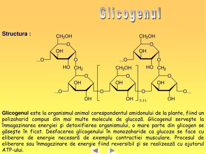 Glicogenul