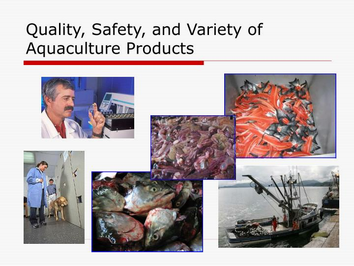 Quality, Safety, and Variety of Aquaculture Products
