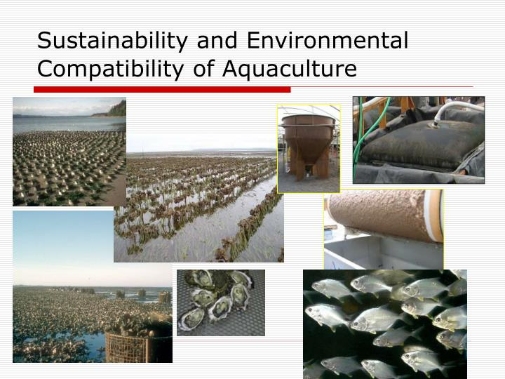Sustainability and Environmental Compatibility of Aquaculture