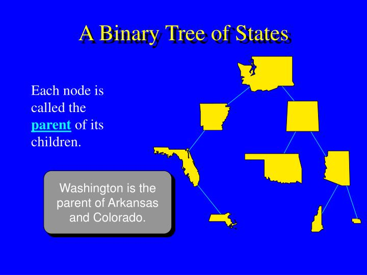 A Binary Tree of States