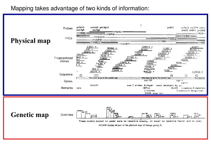 Mapping takes advantage of two kinds of information: