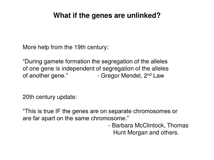 What if the genes are unlinked?