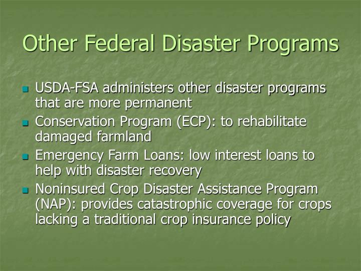 Other Federal Disaster Programs