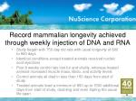 record mammalian longevity achieved through weekly injection of dna and rna