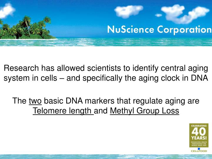 Research has allowed scientists to identify central aging system in cells – and specifically the aging clock in DNA