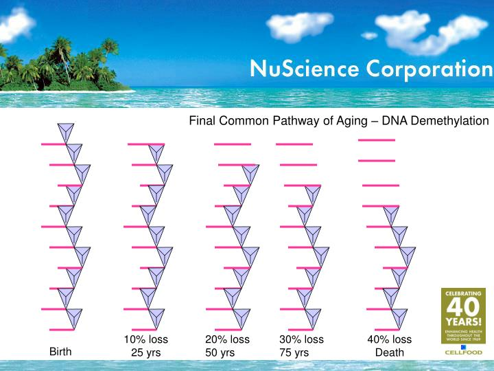 Final Common Pathway of Aging – DNA Demethylation