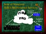 state of tennessee it ba pro fessional services