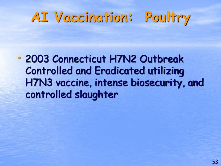 AI Vaccination:  Poultry