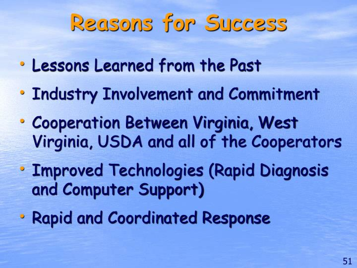 Reasons for Success