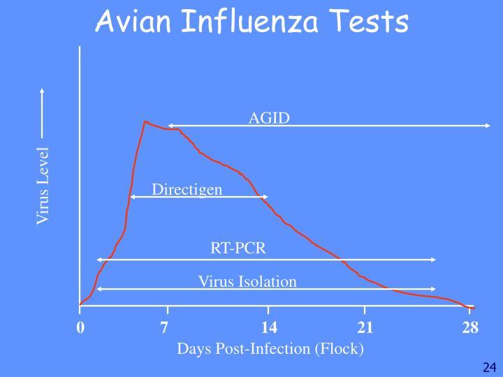 Avian Influenza Tests