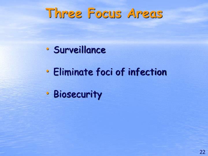 Three Focus Areas