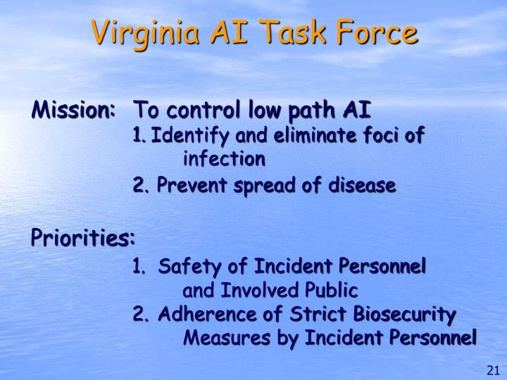 Virginia AI Task Force