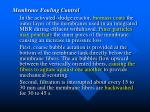 membrane fouling control