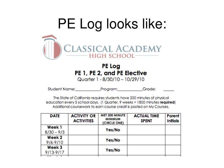 PE Log looks like: