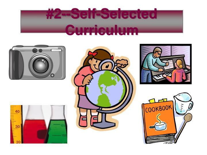 #2--Self-Selected Curriculum