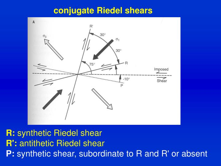 conjugate Riedel shears