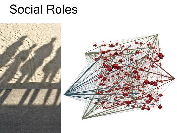 Social Roles