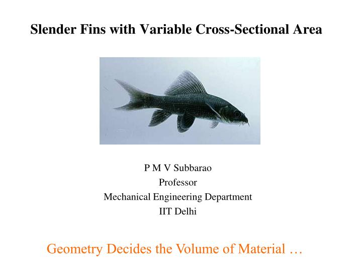 slender fins with variable cross sectional area