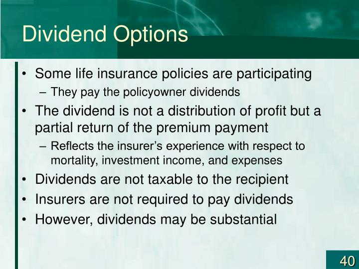 Dividend Options
