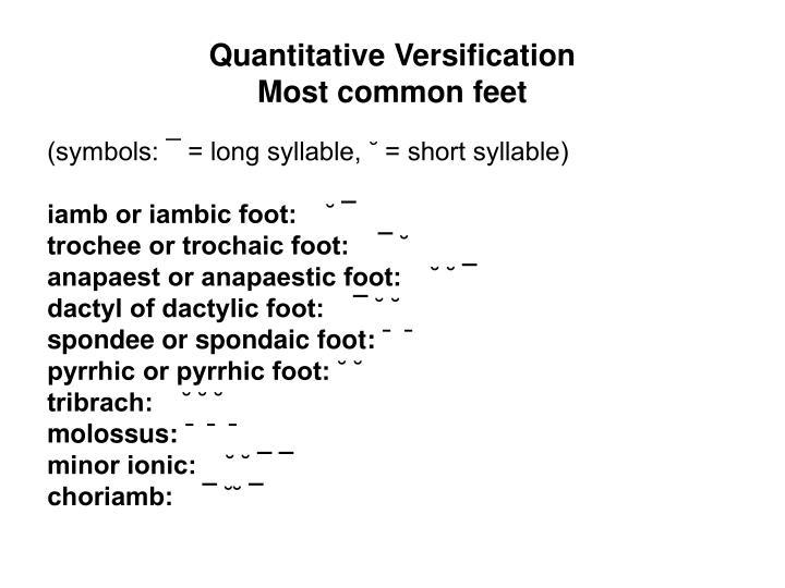 Quantitative Versification