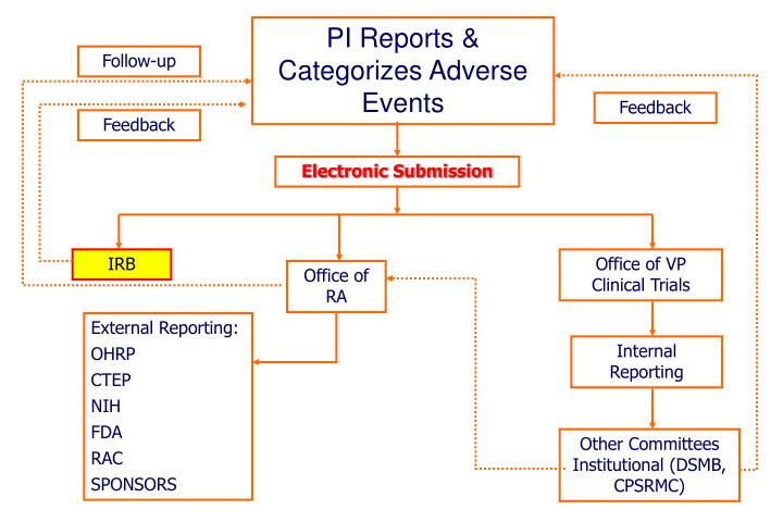 PI Reports & Categorizes Adverse Events