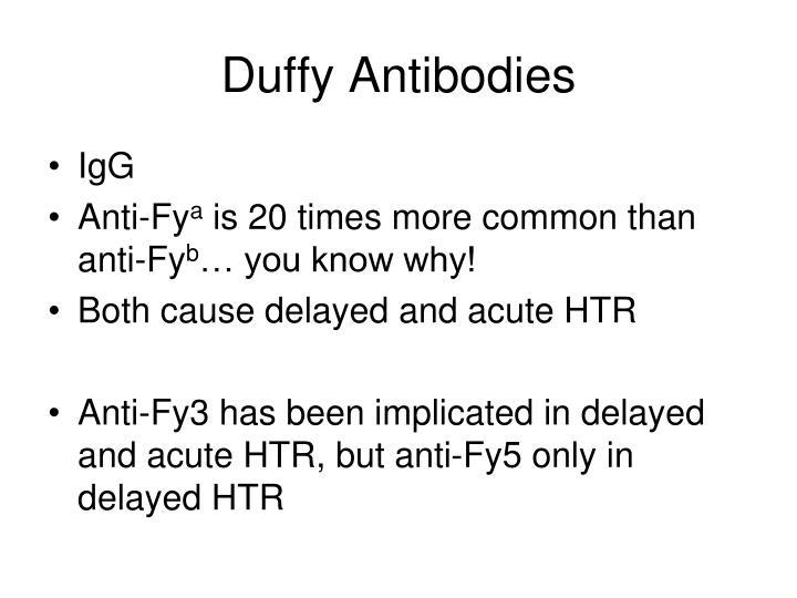 Duffy Antibodies
