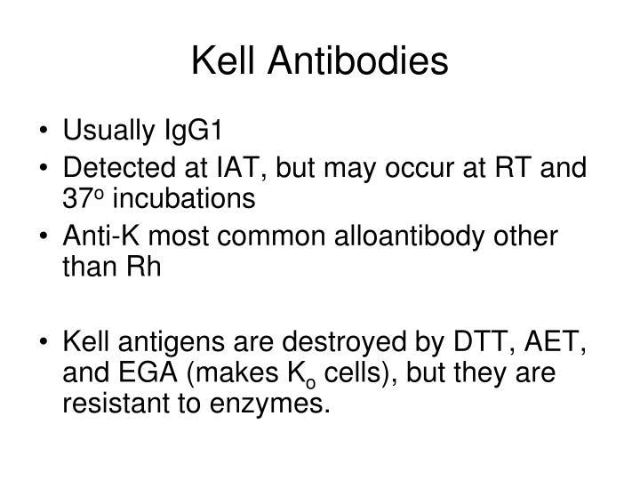 Kell Antibodies