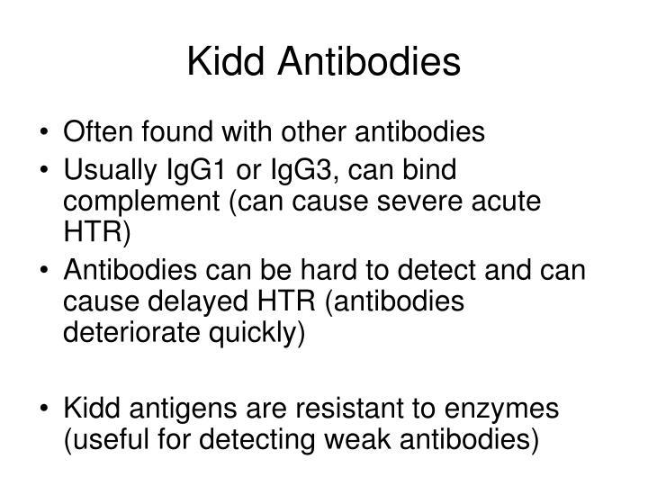 Kidd Antibodies