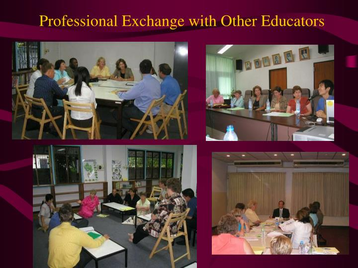 Professional Exchange with Other Educators