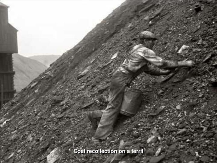 Coal recollection on a terril