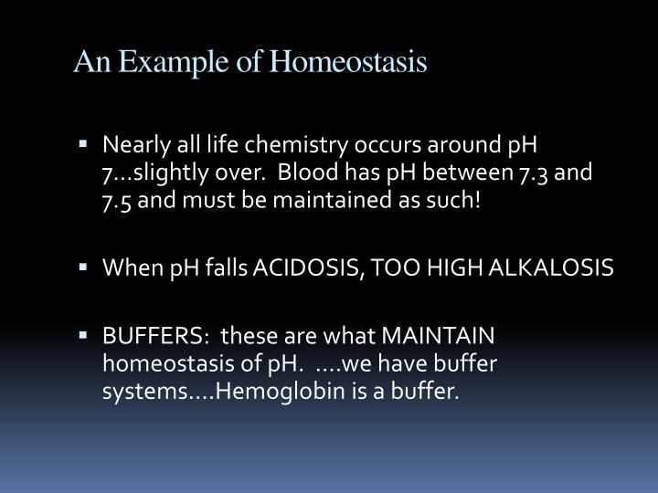 An Example of Homeostasis