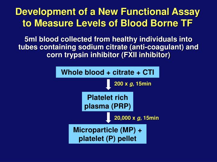 Development of a New Functional Assay to Measure Levels of Blood Borne TF