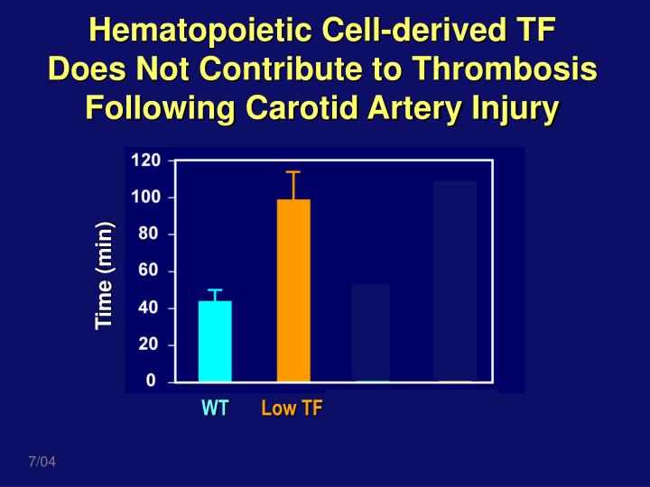 Hematopoietic Cell-derived TF Does Not Contribute to Thrombosis Following Carotid Artery Injury