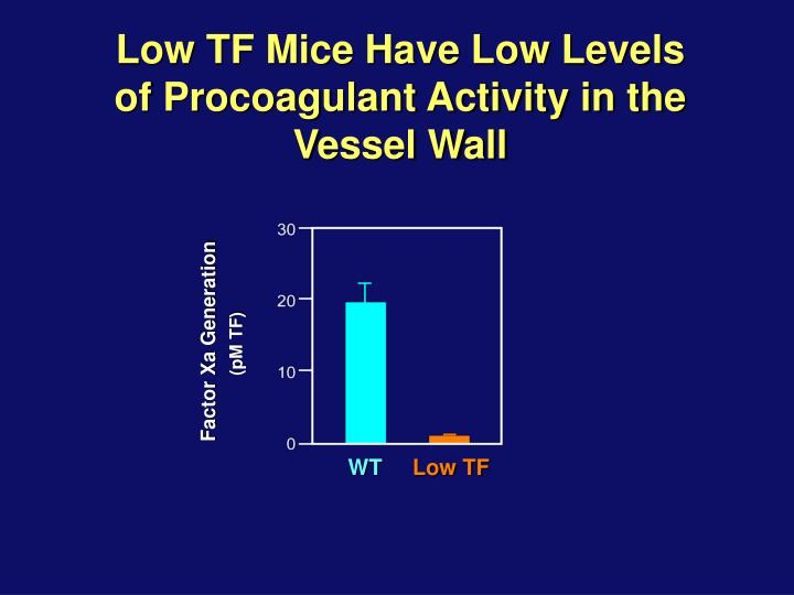 Low TF Mice Have Low Levels of Procoagulant Activity in the Vessel Wall