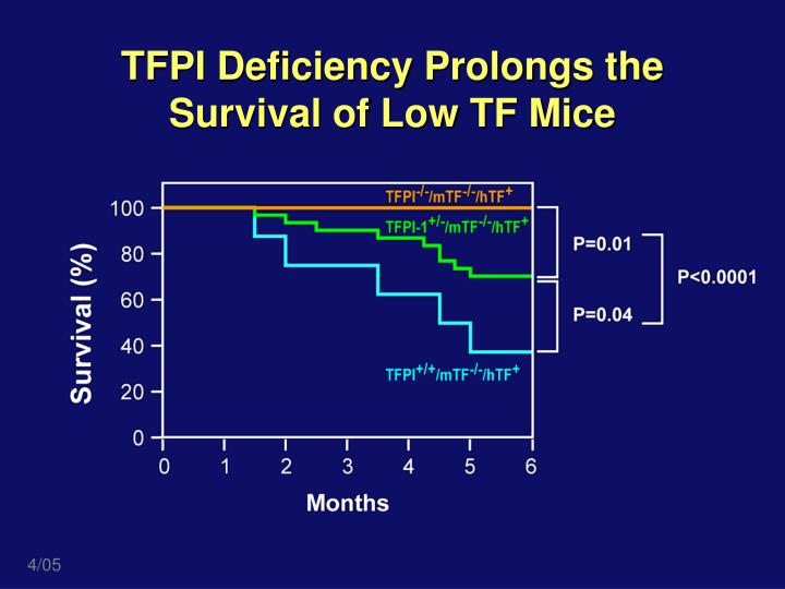 TFPI Deficiency Prolongs the Survival of Low TF Mice