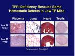 tfpi deficiency rescues some hemostatic defects in low tf mice