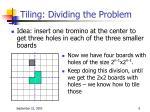 tiling dividing the problem1