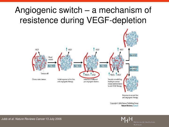 Angiogenic