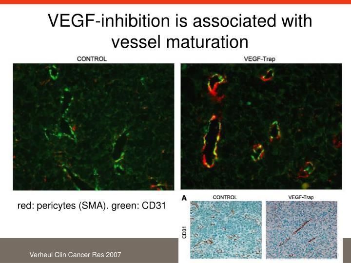 VEGF-inhibition