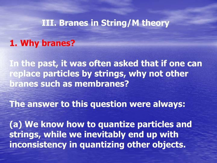 III. Branes in String/M theory