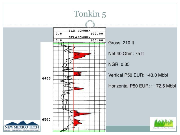 Tonkin 5