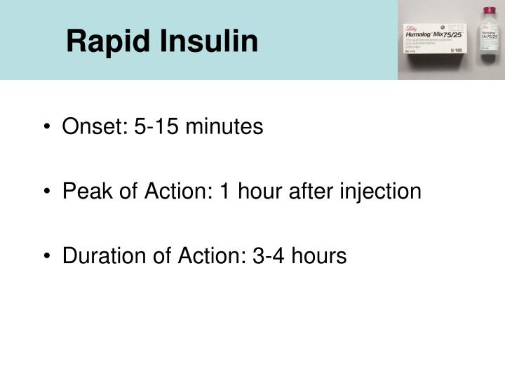 Rapid Insulin