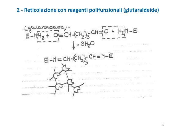2 - Reticolazione con reagenti polifunzionali (glutaraldeide)