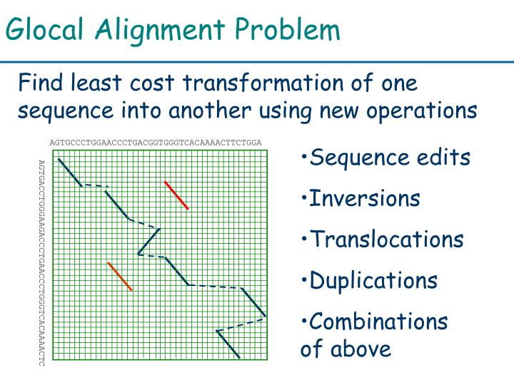 Glocal Alignment Problem