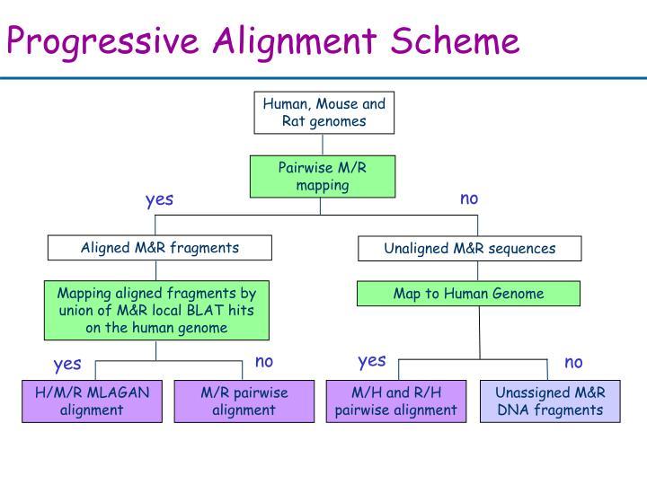 Progressive Alignment Scheme