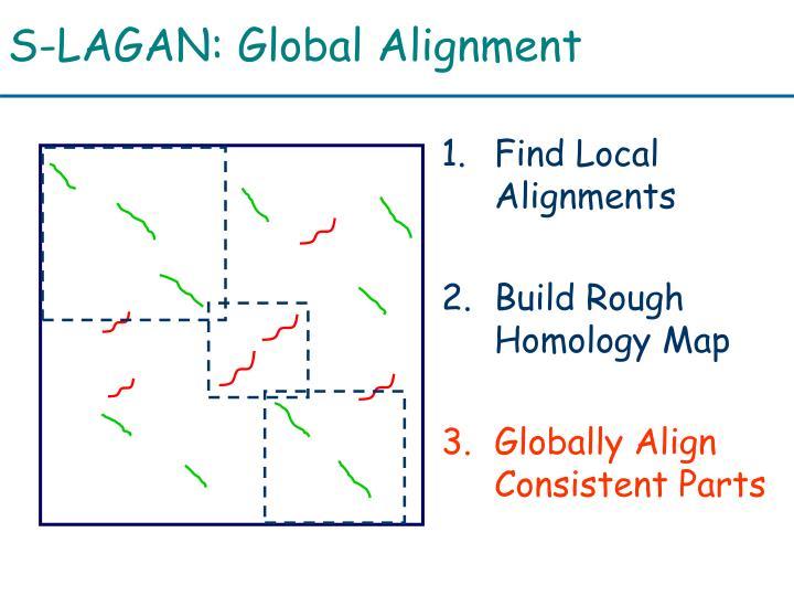 S-LAGAN: Global Alignment